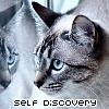 Neko; Self-discovery