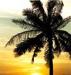 oasys userpic