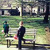 love makes the little thickness of the coin: park bench