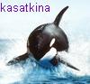 a_kasatkina userpic
