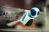 ridley_walker: Flytech2