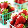 stock // strawberries
