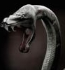 технологическая змея