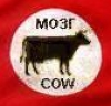 mozg_cow userpic