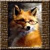 rodis_satory userpic