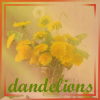 Constance - Make tea, not war: dandelions