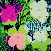 m_scatterbrain userpic