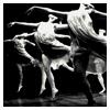bw dance troupe