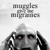 redvelvetcanopy: Muggles Give Me Migraines
