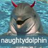 naughty dolphin: evil