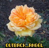 outback_angel userpic