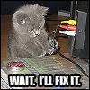 Kat: TechSupport Kitten