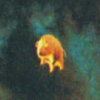 deepseasparrow userpic