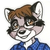 dan_raccoon userpic