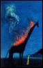 flaming giraffe