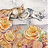 amamama: Cats and roses