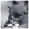 Аня: cat