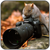 Говнофотограф