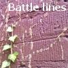 Leah Cutter: Battle lines