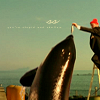 Zosia: TLAwSZ: Zissou and a whale