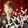 Eriko butterflies
