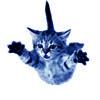 cheekybird userpic