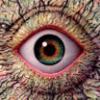 a_huli1 userpic