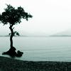 dingus_kahn userpic