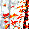 Autumn Leaves on Grey