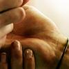 sams palm