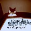 boring days