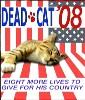 Cat - Dead Cat '08