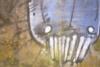 hollyhoxfmn userpic