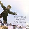 arrested development - moles
