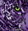 ravenzangell userpic