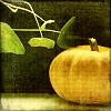 kurpitsamoska userpic