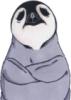 pinguin_auf_ice