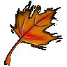 a_falling_leave userpic