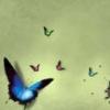 margovedina userpic