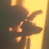 фототень