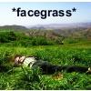 Hiro facegrass