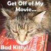 Manhunter Mooching Bad Kitty