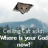 Ceiling Cat!