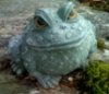Brenda Cooper: Frog in fall