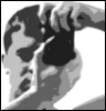 fotalex userpic
