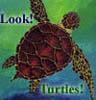 tulleighmohre userpic