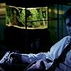 frey: XF a dark couch a dark gun // me