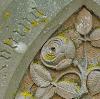 roses on gravestone
