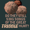 tribble hunt