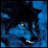 snake_and_wolf userpic